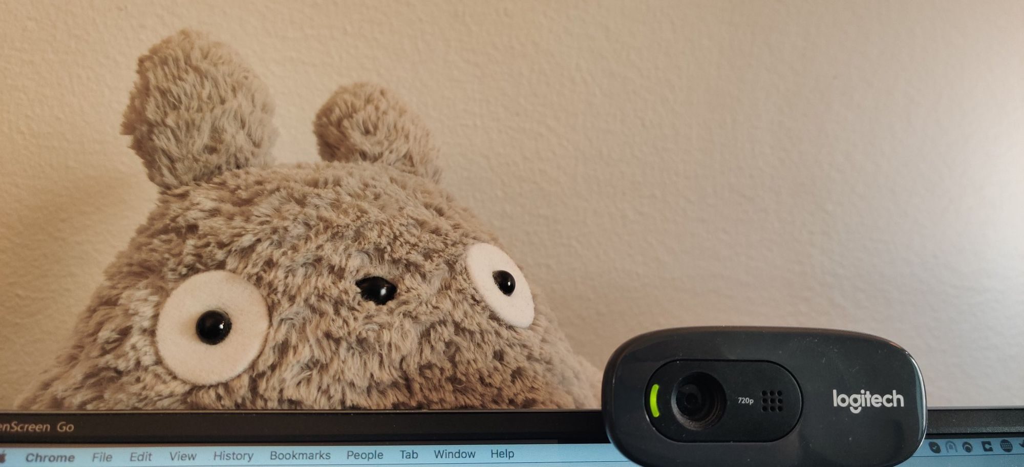Plush Totoro sitting partially behind a screen and a webcam pointed towards the camera.